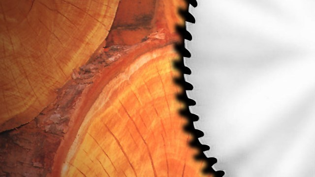 Former Lumber Executive Pleads Guilty for Embezzling over $800,000