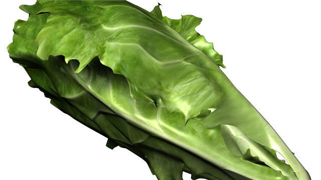Consumer Reports: Avoid eating romaine lettuce after E. Coli outbreak in US, Canada