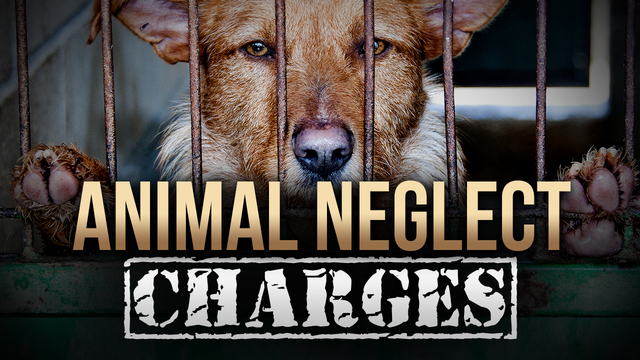2 Arrested After Starving Dog Found in Raleigh County