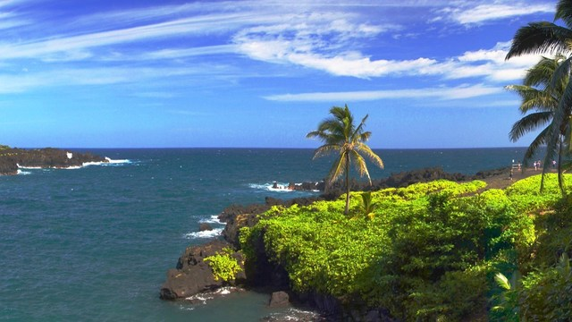 Beware online promotions that offer free Hawaiian Airlines tickets