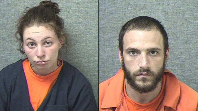 Police: Pair high on bath salts fired gun at fireflies, mistaking them for alien lasers