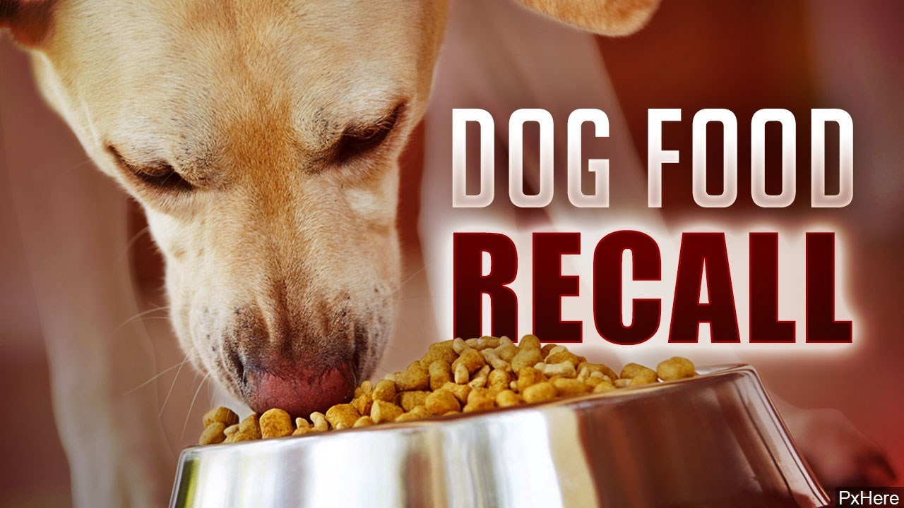 Fda Issues Several Recalls For Dry Dog Food